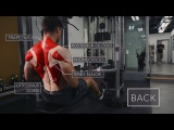 Exercise Anatomy: Back Workout  | Pietro Boselli