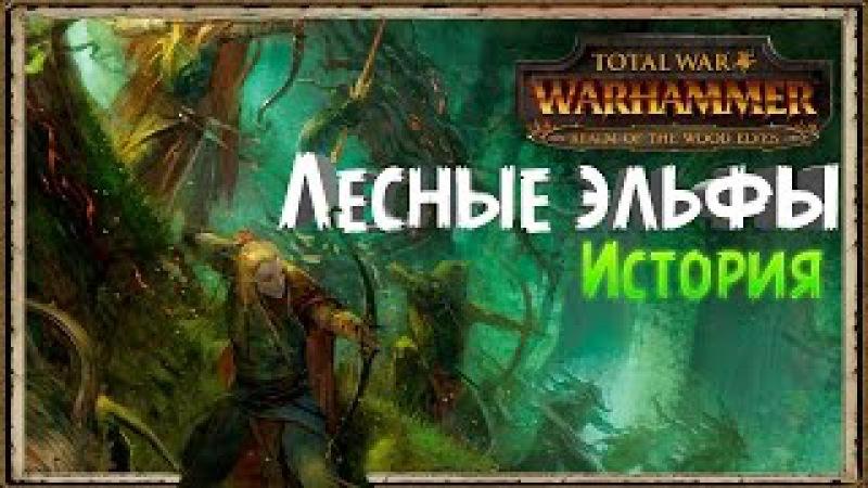 История Лесных эльфов Total War Warhammer Lore
