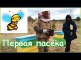 Начинающий пчеловод поставил первые ульи в родовом поселении Жива