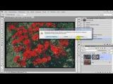 Как быстро улучшить качество фотографии | Работа с главным объектом съемки в фот...