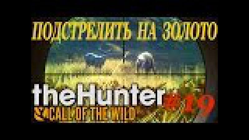 TheHunter Call of the Wild 19 ЗОЛОТОЙ ВЫСТРЕЛ Update 1 16