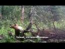 Национальный парк Таганай, Челябинская область