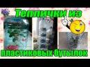Теплички для укоренения листьев и черенков комнатных растений из пластиковых бутылок в квартире
