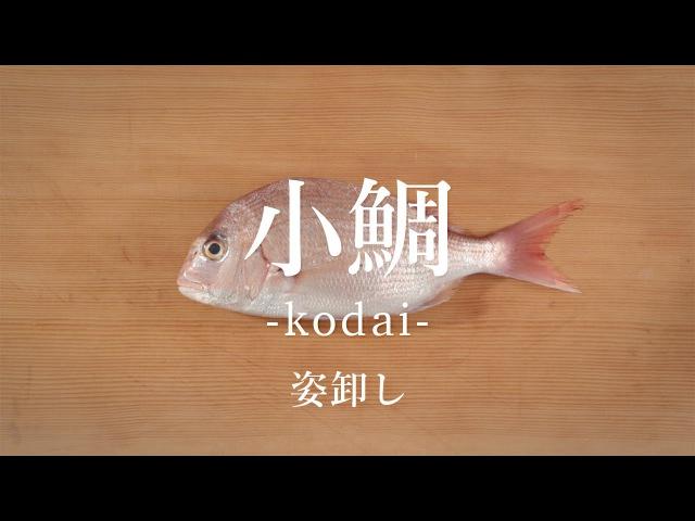 How to filet Crimson Sea Bream ver. Sugata-oroshi