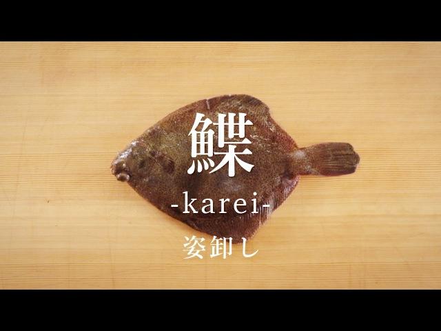 How to filet Righteye Flounder ver.Sugata-Oroshi