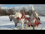 Любовь Шепилова и Артур Гари - Новогодный снег