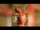 Маленький мальчик-гей, Христос мёртв (2012)   Little Gay Boy