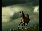 Табор уходит в небо  – Дорога. Евгений Дога