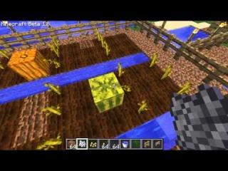 Как выращивать арбузы и тыквы -туториал походу)