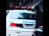 stels_dima video