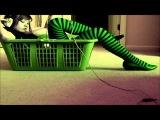 Hector Couto &amp Santi Garcia feat. Pablo Fierro Let the music Play (Alex Kentucky, Deeplastik Remix)