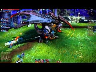 TERA Berserker lv50 gameplay