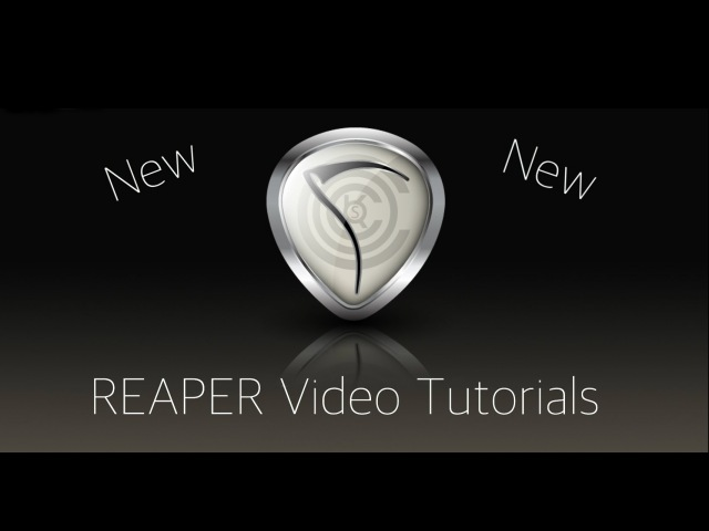 REAPER 5 Explained - 30. Themes Layouts