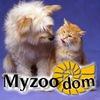 """Зоомагазин """"Myzoodom"""""""