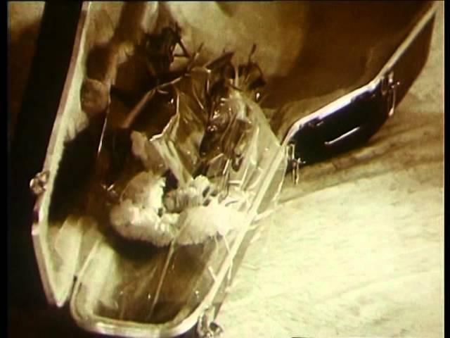 Александр Новиков ГОП СТОП ШОУ Концерт в Московском Театре Эстрады 1991 г