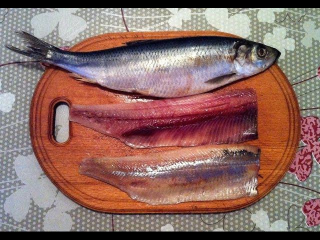 Простая и Быстрая Разделка Селедки на Филе / Cutting Herring / Как Разделать Сельдь / Разделка Рыбы