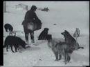 На Северном полюсе (1937); северныйполюс