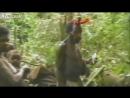 Племя первый раз видит белого человека  1976 год  Папуа Новая Гвинея