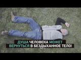 Тайны Чапман 11 апреля на РЕН ТВ