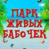"""Уникальная выставка """"Парк Живых Бабочек""""."""