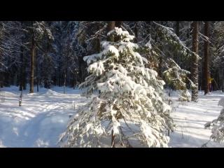 Атомка-Талаги лыжня через избы