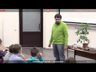 Занятие для детей с тараканами в ИТМО. Прямая трансляция