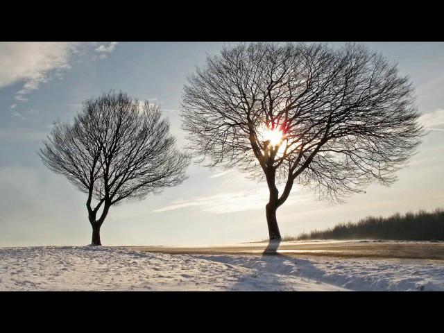 Близость - Рискни Быть Настоящим. (Аудиокнига, читает NikOsho) | Эзотерика