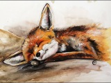 Watercolor baby Fox Painting Full Video Demonstration