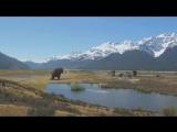 01. Мамонты Титаны Ледникового периода  Mammoth Titan of the Ice Age (2010)
