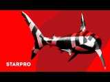 Jack Action - Метеорит (Lyric video)