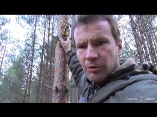 Как повесить в лесу тент, чтобы не навредить деревьям