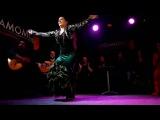 Flamenco Cardomomo with amazing Paloma Fantova