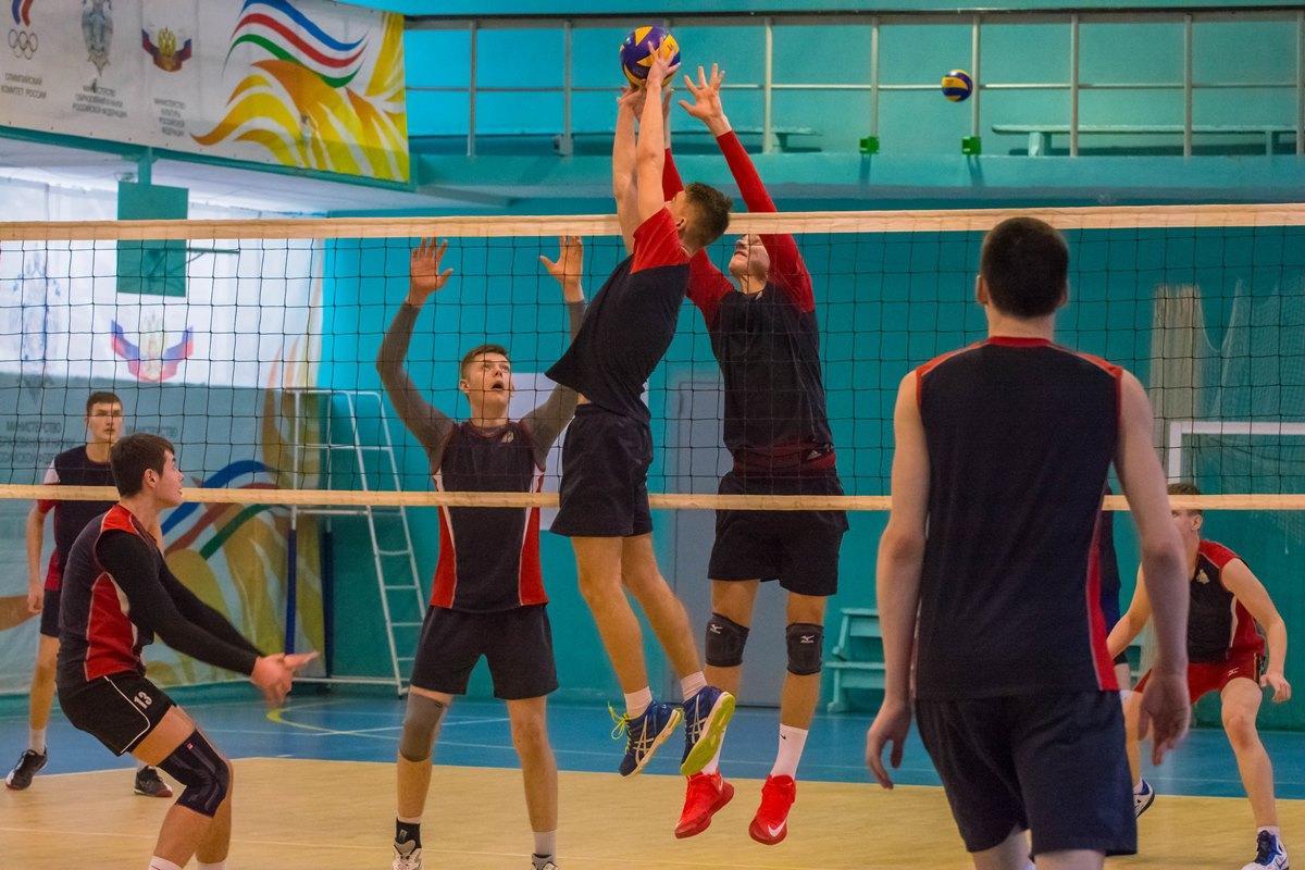 Волейбол ЦИВС