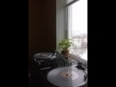 Turntables shots 1 practice routine Decl aka Le Truck Кто ты