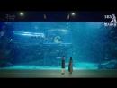 [Mania] 320 [720] Легенда Cинего Моря Legend Of The Blue Sea