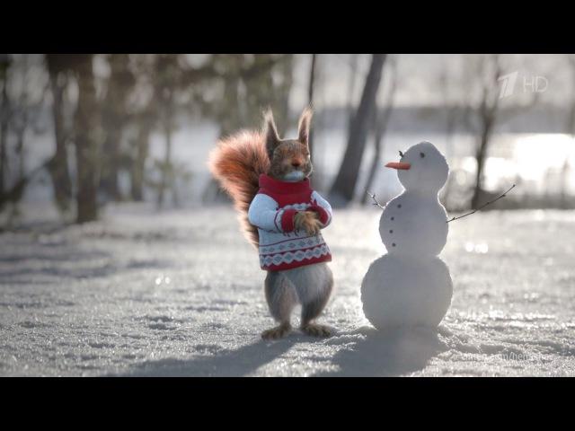 Новогодние заставки рекламы Белки (Первый Канал, 2016-2017)