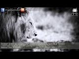 Robert Babicz - Black Lion (John Digweed &amp Nick Muir Remix) Babiczstyle