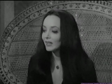 Los locos Addams 1x03 Morticia y la Liga de Damas audio latino