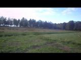 Жатецкие гуси
