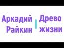Аркадий Райкин - «Древо жизни» радиоспектакль слушать онлайн