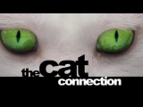 BBC Мир природы Загадочные кошки (2003)
