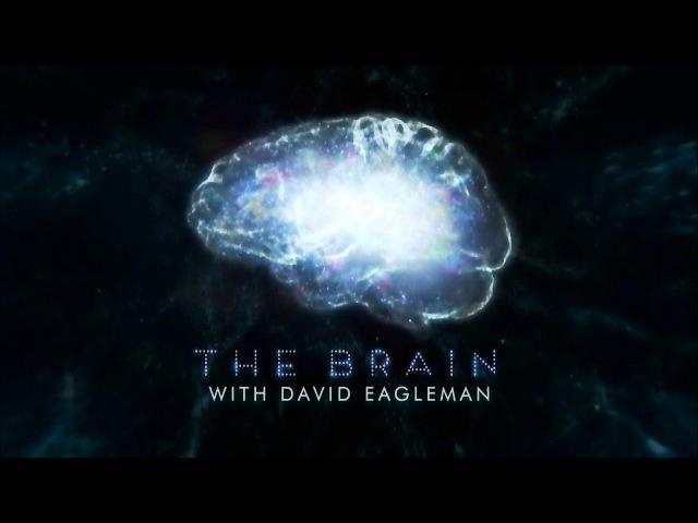 Мозг Человека 1 серия (2015) HD