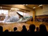 3D Голограмма Кита в Спортивном зале. /3D Hologram whale in the gym