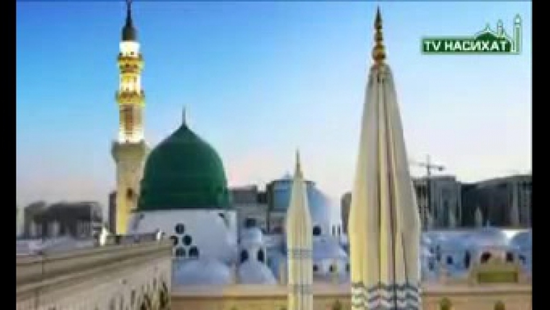 🌺🌸👆 тот кто первым приветствует Саламом Своему Брату попадет в рай🌺🌸👆 👉Аллаху лучше знать👈