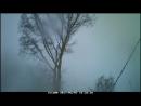 Дерева спил деревьев, арбористика 8-983-300-4610