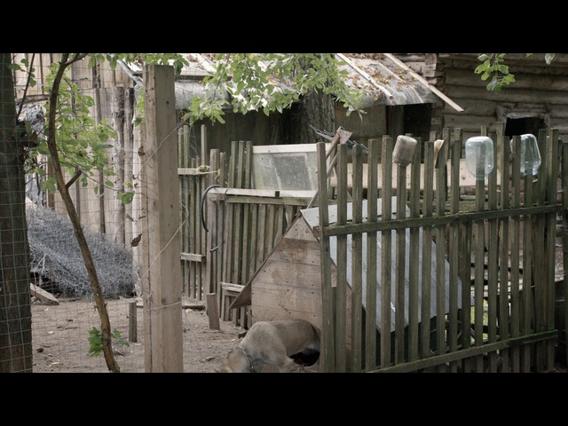 Год в Тоскане 8 серия (2015)