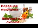Лечение жировика народными средствами