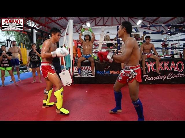 Muay Thai Superstar Sangmanee Sor Tienpo joins the YOKKAO Dream Team