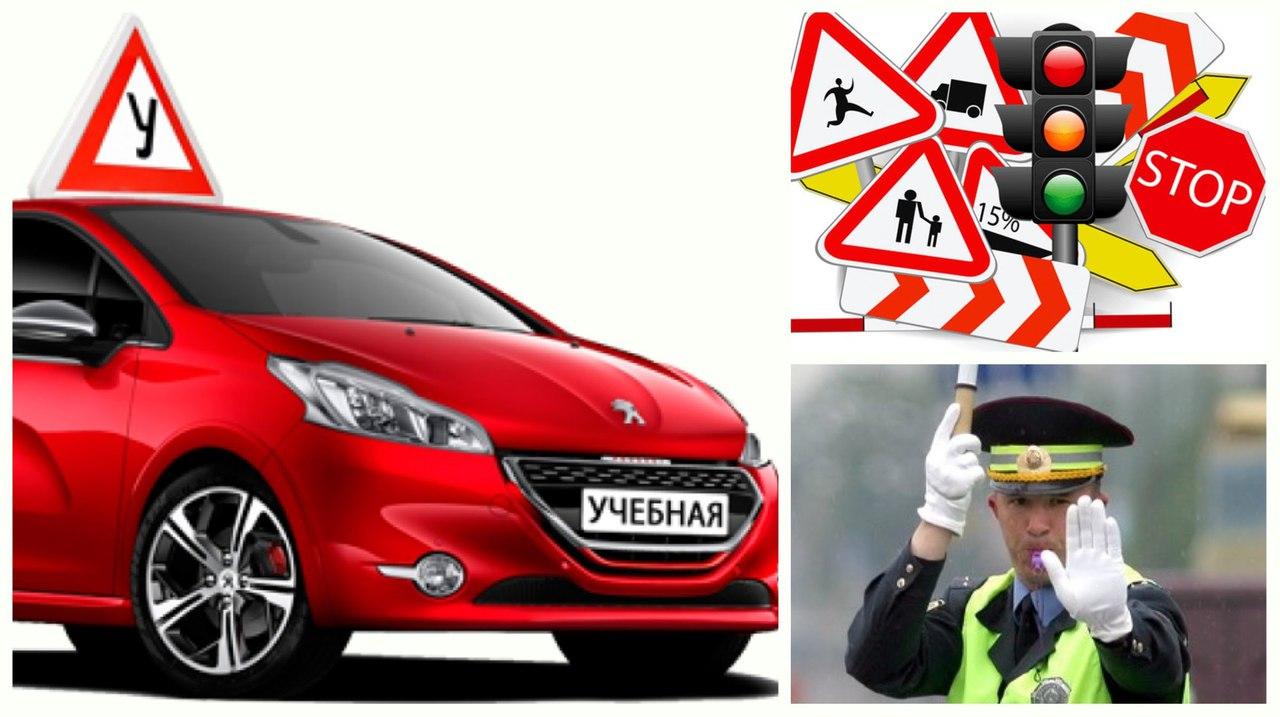 Госавтоинспекция с 20 октября усилит контроль за автоучебными организациями