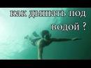 КАК ДЫШАТЬ ПОД ВОДОЙ ! ЗАДЕРЖКА ДЫХАНИЯ НА 100 СЕКУНД - FREEDIVING